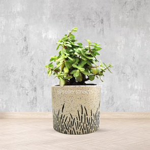 Sellerstreets  White Color Designer  Flower Pot | Ideal For Office Desk